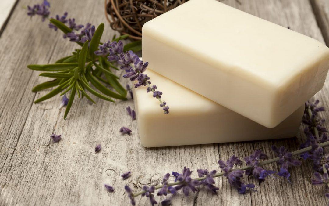 Le savon au lait de chèvre : le meilleur allié pour l'entretien corporel