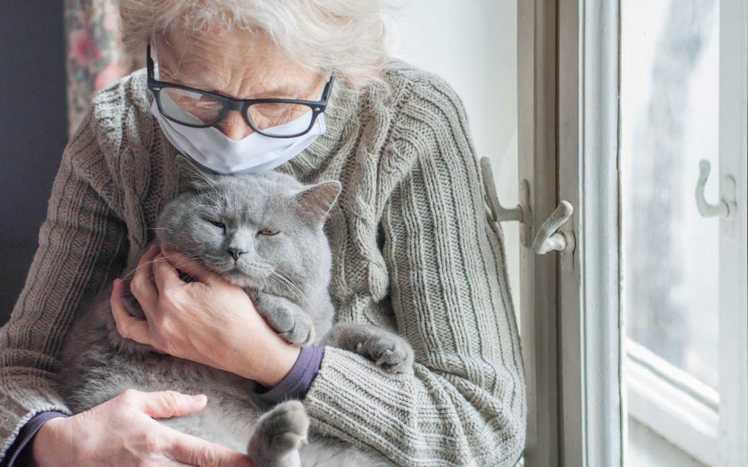 Solitude chez les seniors : l'état des lieux en France